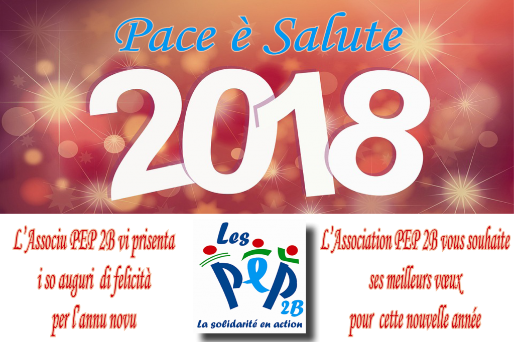 Voeux 2018 PEP 2B